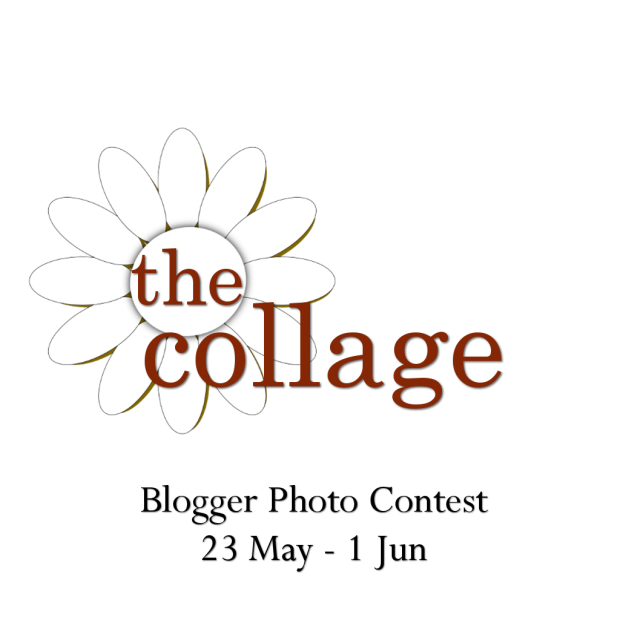 the collage logo 2014 - photo contest poster