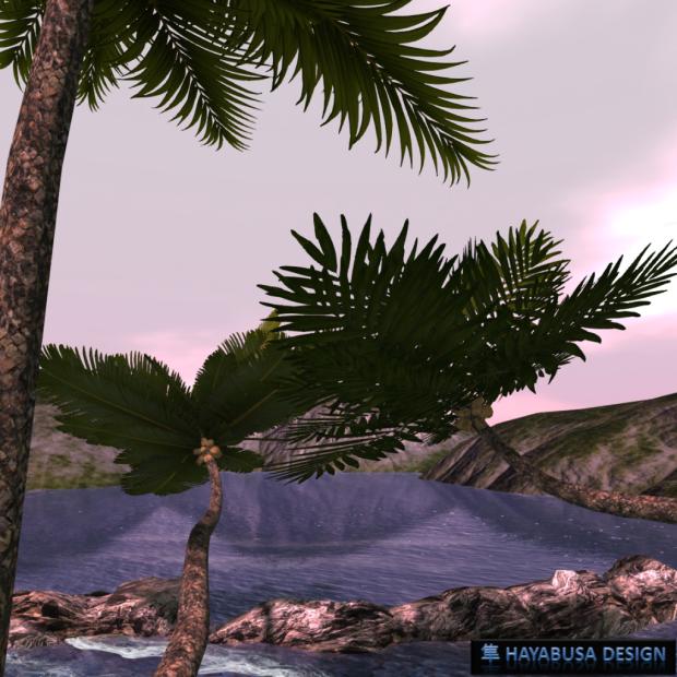 Hayabusa Design Palm Tree - 3