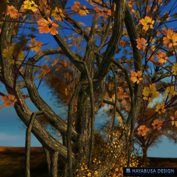 Hayabusa Design Elegant Tree all in curve 2