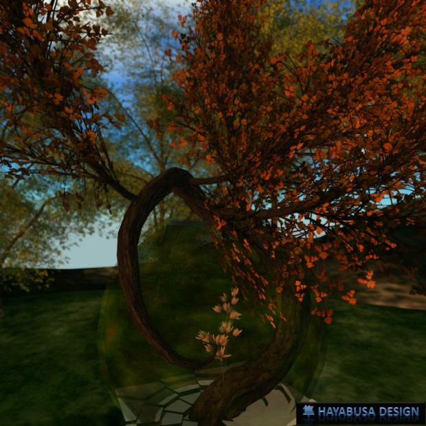 Hayabusa Design - Tree exit the Sphere - 4
