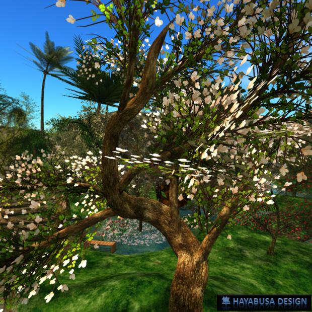 Hayabusa Design - New Elegant Tree 1