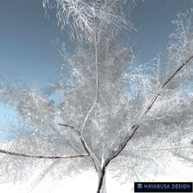 Hayabusa Design - Prunus Serrulata Japonica - 3