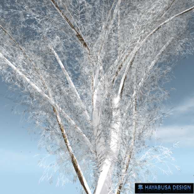 Hayabusa Design - Winter - the new generation