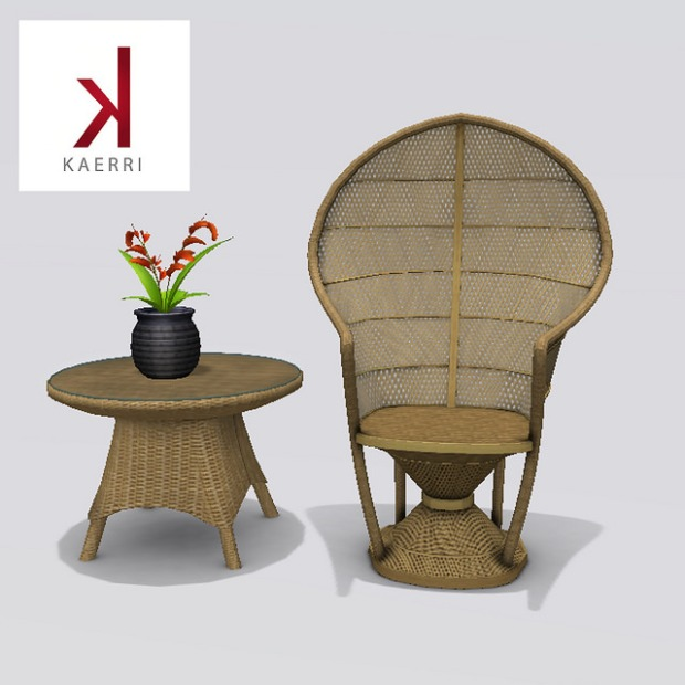 Kaerri - peacock chair and table