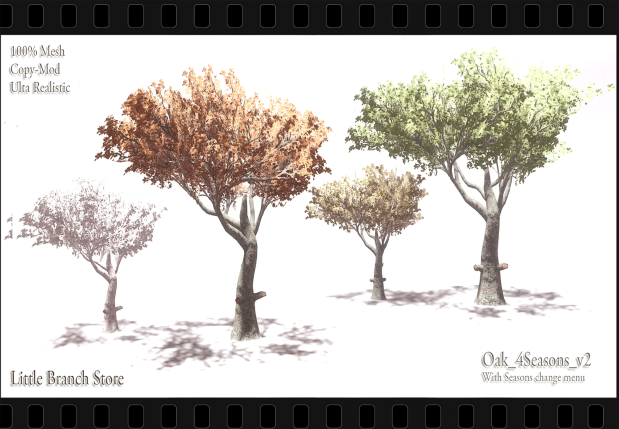 Oak_4Seasons_v2_LTD