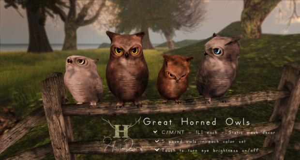 Half Deer - Great Horned Owls - Collabor88