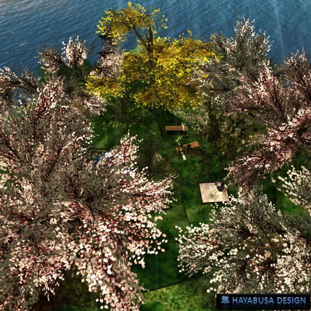 Hayabusa Design - Sakura garden M1 v1-1 - 1