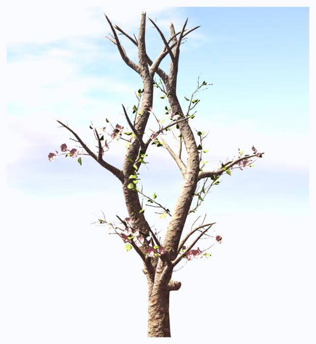 SpringBrise1_Textures_changer_menu