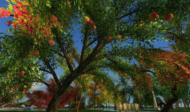 Hayabusa - customizable apple tree
