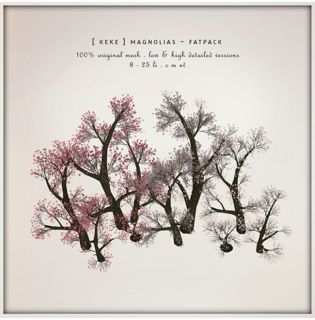 keke - magnolia - seasons story