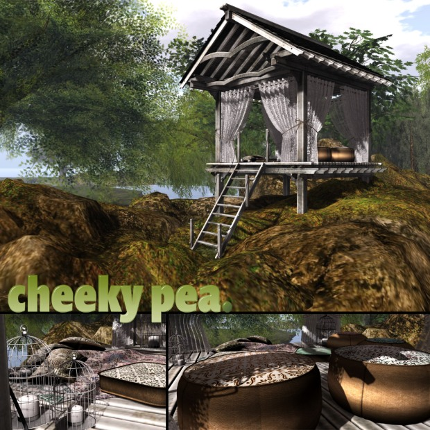 Cheeky Pea_Calhan Nest_Fameshed