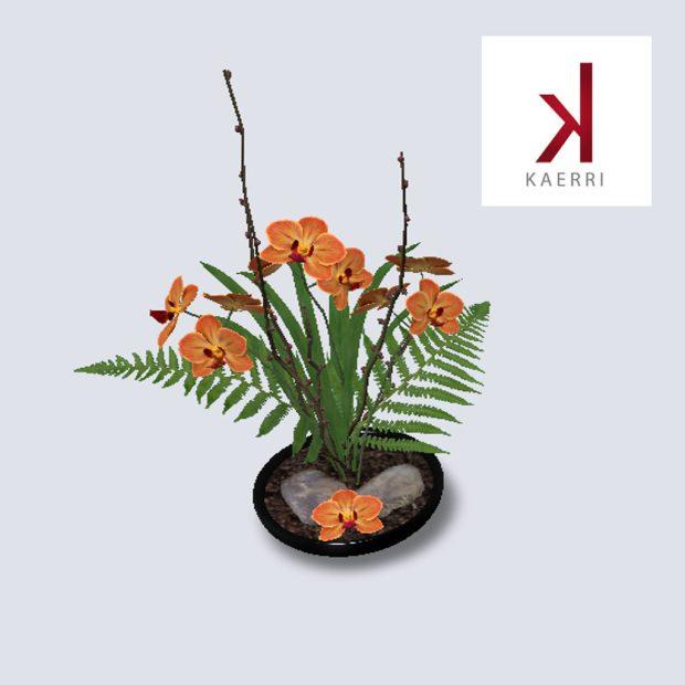Kaerri - May Gift - mainstore